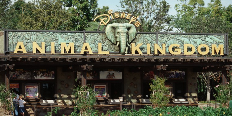 Lo nuevo de Animal Kingdom en Disney World!